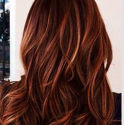 dark brown hair with copper highlights brown hairs