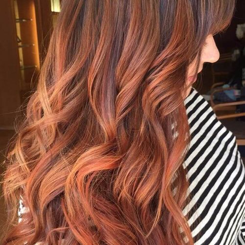 Dark hair with subtle red highlights
