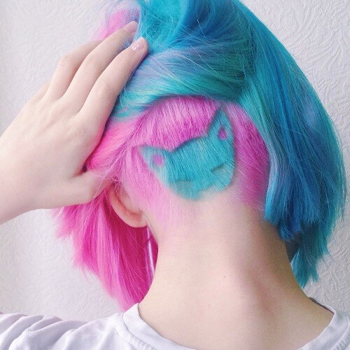 Kitty Design and Two Tone Hair