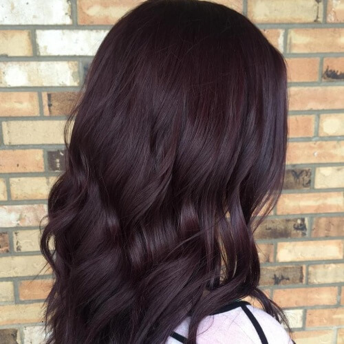 Chocolate Plum Hair Color