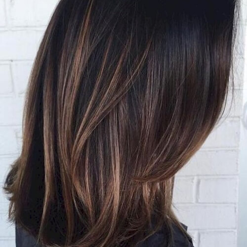 Dark Hair with Honey Brown Accents