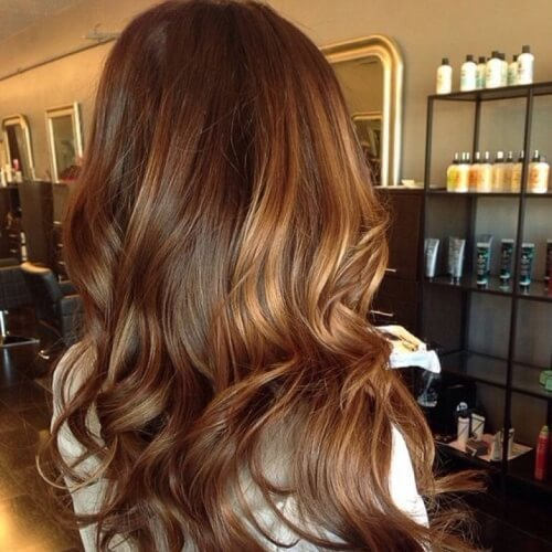 Honey Brown Hair Highlights on Chestnut Hair