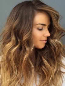 Honey Brown Hair with Chocolate Top