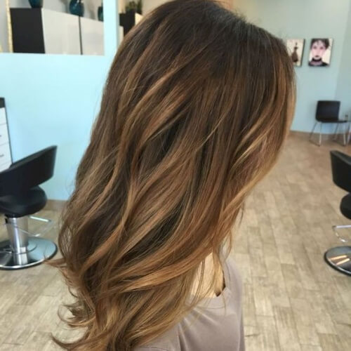 Subtle Honey Brown Hair Highlights