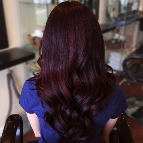 Black Cherry Hair with Purple Tones