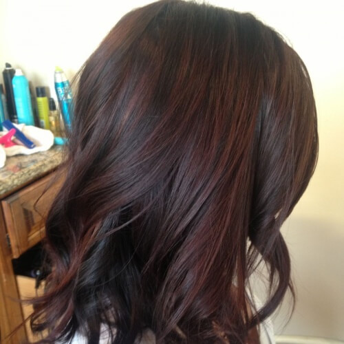 Dark Brown Hair with Black Cherry Hair Shine