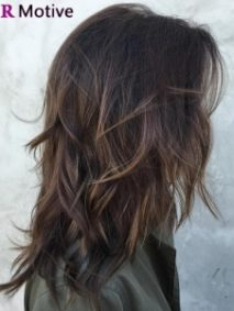 highlights on dark brown hair featured image