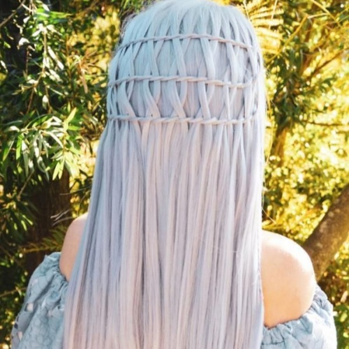 Net Braids Hairstyles