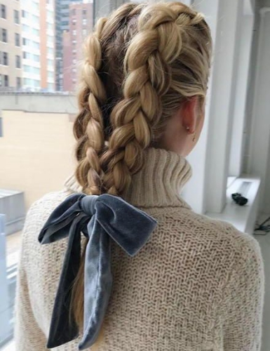 Double Braids in Ponytail