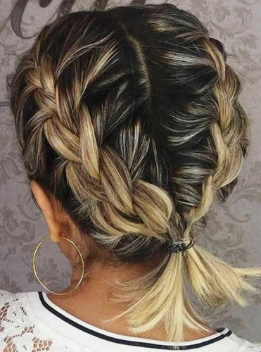 Short Double Braids Ending in Ponytail